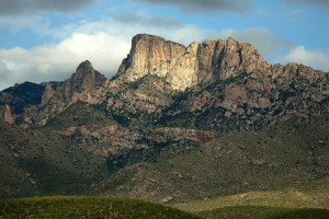 Catalinas backside